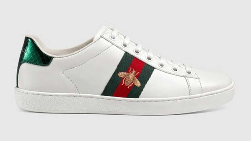 sneaker-Gucci-image